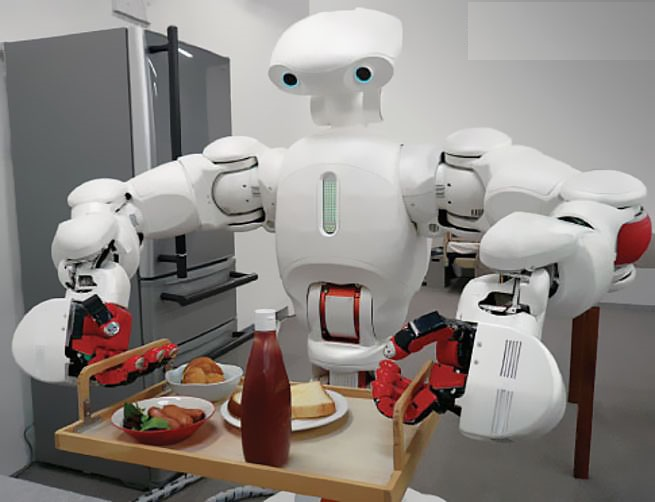 نمونه ای از یک ربات خدماتی مشهور به TWENDY-ONE